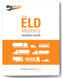 Resources The ELD Mystery eBook Thumbnail