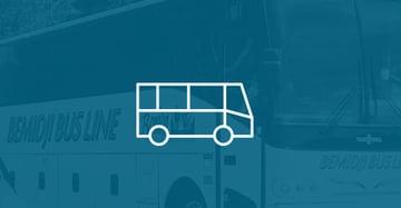 Read the Bemidji Bus Line Case Study
