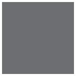 vision-gray-icon